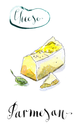 gourmet: Pieces of delicious Gourmet Organic Parmesan Cheese with basil, watercolor, hand drawn - Illustration