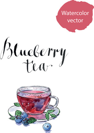 whortleberry: Blueberry antioxidant organic cup of tea with blueberries and leaves, watercolor, hand drawn