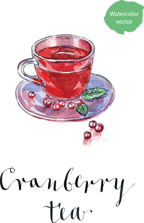 cranberries: Hot winter drink with cranberries, watercolor, hand drawn