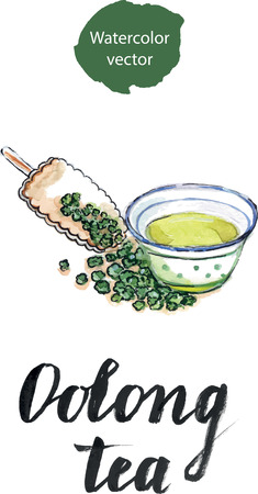 Dry Chinese oolong tea leaf and oolong tea in traditional cup and wooden bamboo scoop, watercolor, hand drawn Illustration