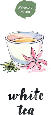 steam of a leaf: Cup of tea with flower and petals tea, watercolor, hand drawn