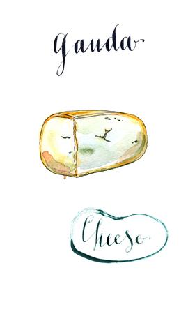 spongy: Piece of Fenugreek gauda herb cheese, watercolor, hand drawn - Illustration