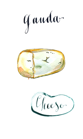 Piece of Fenugreek gauda herb cheese, watercolor, hand drawn - Illustration