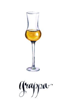 brandy: Glass of Italian grappa brandy, watercolor, hand drawn - Illustration