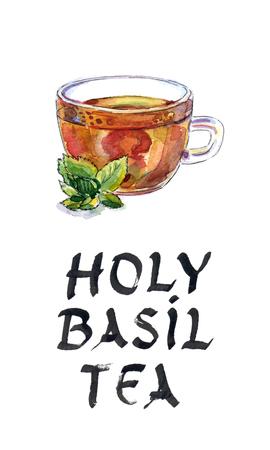 tulasi: Holy Basil Tulsi Tea Ayurvedic Remedy, Indian tea, watercolor, hand drawn - Illustration Stock Photo