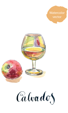 french culture: Glass of calvados with red apple, watercolor, hand drawn - Illustration