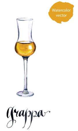 Glas italienischen Grappa Schnaps, Aquarell, von Hand gezeichnet - Vektor Illustration