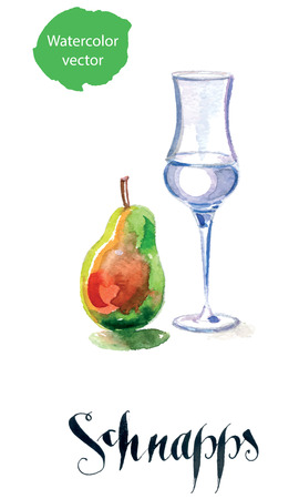 brandy: Schnapps glass filled with clear liquid and pear Illustration