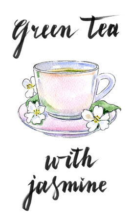 Cup of green tea with jasmine flowers, hand drawn - watercolor Illustration