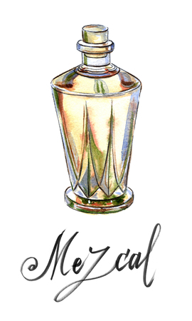 distilled: Mexican drink Mezcal from agave cactus, hand drawn - watercolor Illustration Stock Photo