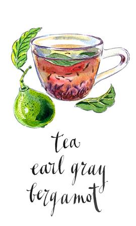 grey: Cup of Earl Grey tea with bergamot, Kaffir lime, hand drawn - watercolor Illustration