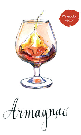 Glass of armagnac, hand drawn - watercolor vector Illustration