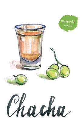 georgian: Glass of georgian vodka chacha with grape, hand drawn - watercolor vector Illustration