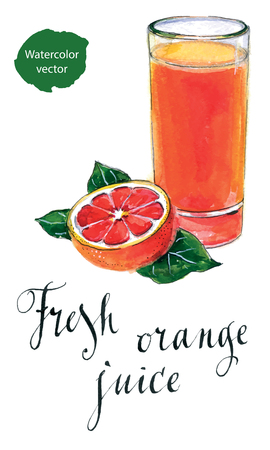 orange juice glass: Glass of orange juice with orange, hand drawn - watercolor vector Illustration