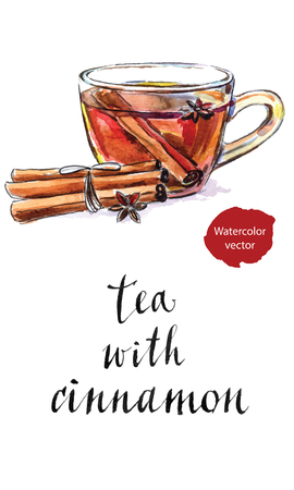 anise: Glass cup of tea with dried cinnamon and anise star, hand drawn - watercolor vector Illustration Illustration
