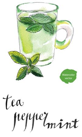 Tasse Tee mit frischen Pfefferminzblättern, von Hand gezeichnet - Aquarell Vektor Illustration