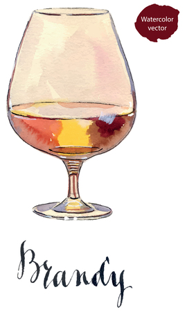 brandy: Glass of scotch whisky brandy with ice, hand drawn - watercolor vector Illustration