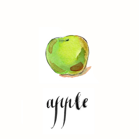Watercolor hand drawn apple - Illustration