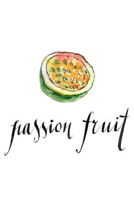 grenadilla: Passion fruit, hand drawn - watercolor vector Illustration