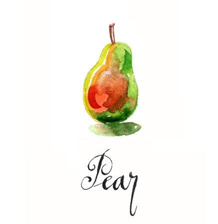 Pear, hand drawn, watercolor - Illustration