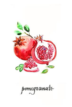 fruitage: Watercolor hand drawn pomegranates - Illustration