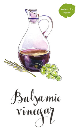 Bottle of balsamic vinegar, crema balsamico with a twig of rosemary and green grape, hand drawn - watercolor vector Illustration