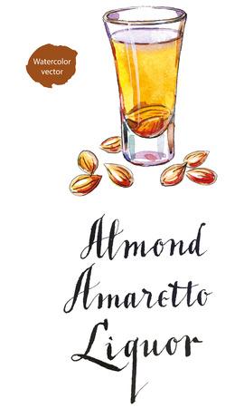 Wineglass of almond liquor amaretto, hand drawn - watercolor vector Illustration
