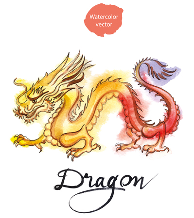 speculative: Yellow-red dragon, hand drawn - watercolor vector Illustration Illustration
