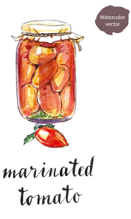 preserved: Glass jar of marinated tomatoes, hand drawn - watercolor vector Illustration