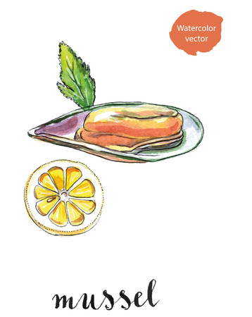 Opened mussel with leaf of parsley and lemon, hand drawn - watercolor vector Illustration
