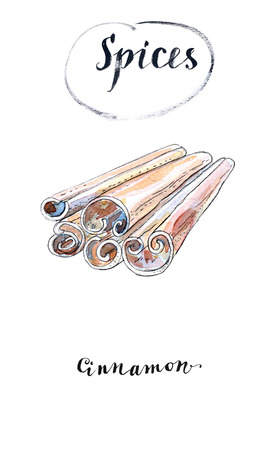 Watercolor cinnamon sticks. Product to prepare delicious and healthy food, hand drawn, illustration Stock Photo