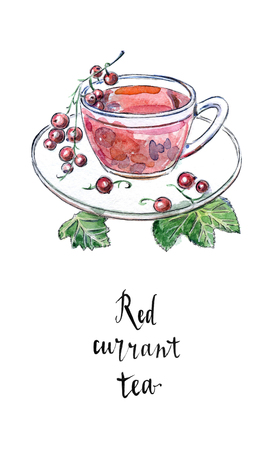 Glass cup of red currant with fresh berries and green leaves in watercolor. Summer drink, hand drawn, illustration