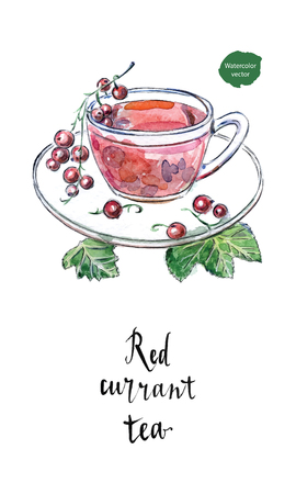 Glass cup of red currant with fresh berries and green leaves in watercolor. Summer drink, hand drawn, vector illustration