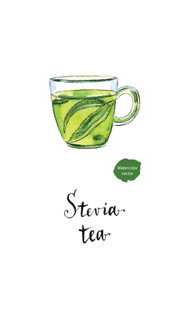 Ecological herbal tea in glass cup with stevia leaves in watercolor, hand drawn, vector illustration Illustration