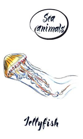 Yellow light jellyfish, hand drawn, watercolor illustration