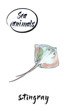 Stingray swimming, hand drawn, watercolor illustration