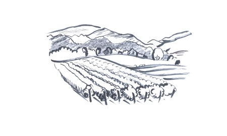 Mountains landscape sketch - hand drawn vector sketch