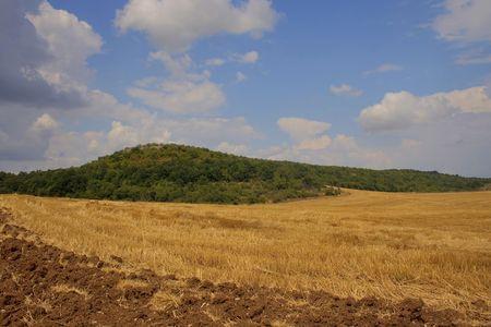 agricultural plains  photo