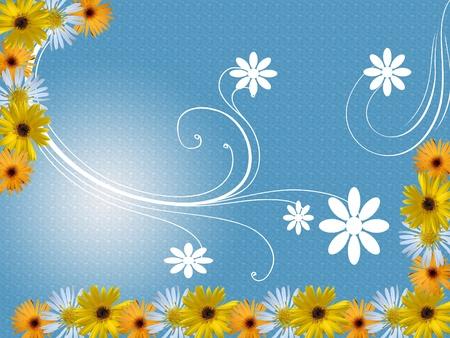 flowers frame photo