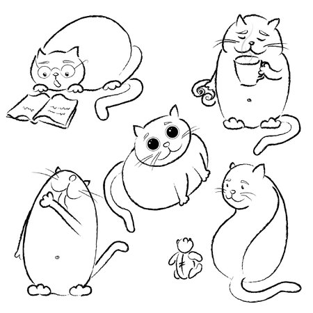 Set with five fat cats in vector, black outline Illustration