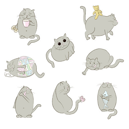 Set with eight grey fat cats in vector Illustration