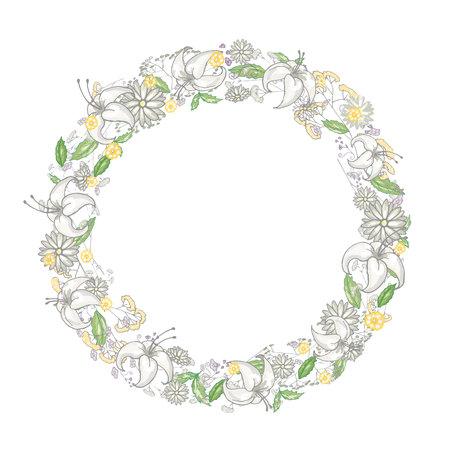 백합 및 벡터에서 camomiles 라운드 꽃 프레임