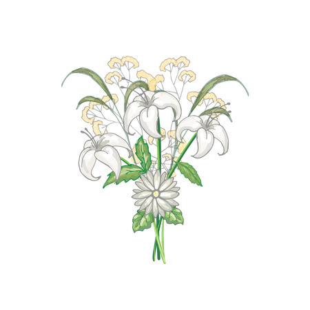 Bouquet of three lilies in vector