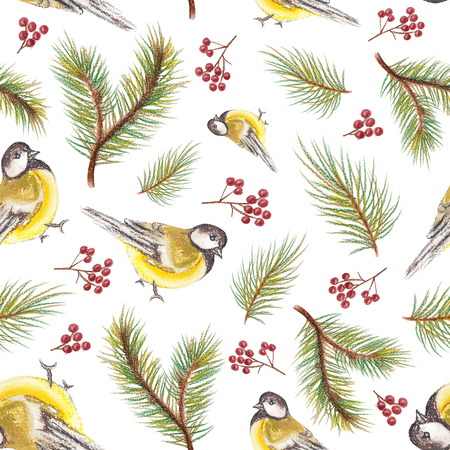 Pastel seamless background pattern with spruce branches, titmouses and berries Stock Photo