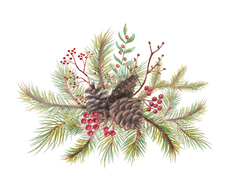 Christmas bouquet composition with a cones, berries and spruce branches. Pastel hand drawn illustration