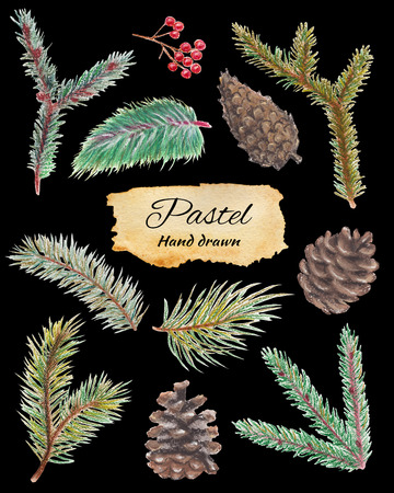 Set with spruce branches, cones and mountain ash. Pastel hand drawn illustration Stock Photo