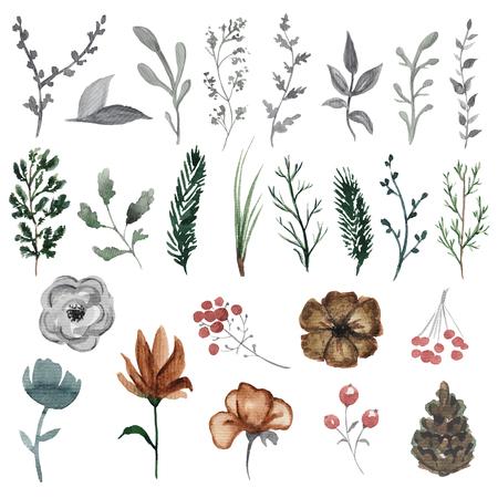 Vintage set with twenty five plant elements. Watercolor hand drawn illustration 스톡 콘텐츠