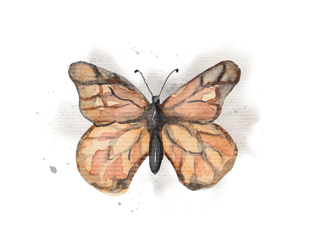 Vintage butterfly on watercolor splotches. Watercolor hand drawing illustration Stock Photo
