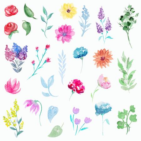 Vintage set with twenty seven  plant elements. Watercolor hand drawn illustration Stock Photo
