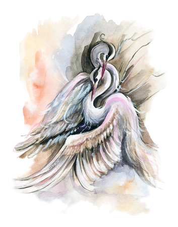 A pair of cranes on color background. Watercolor hand drawn illustration Reklamní fotografie